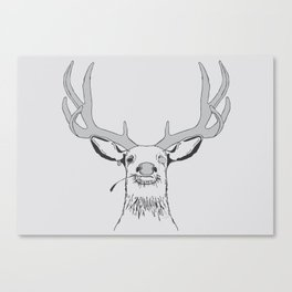 Deer, Pirate  Canvas Print