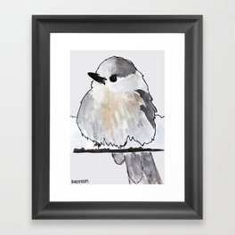 Bird no. 178: Hermp. Framed Art Print