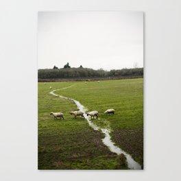 cross (Oregon)  Canvas Print