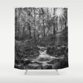 Forest Stream Sunrise Shower Curtain