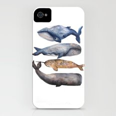 Whales // Fashion Illustration iPhone (4, 4s) Slim Case