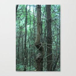 Strenght in numbers Canvas Print