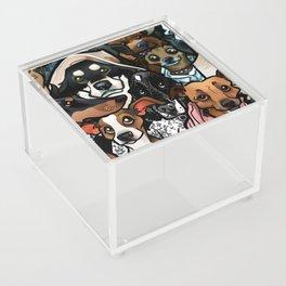 Doodle My Dog Acrylic Box