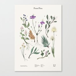 Shelter 2 - Forest Flora Canvas Print