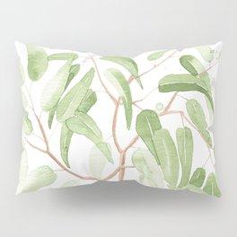 Ginger Jar + Eucalyptus Pillow Sham