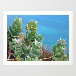 Caribbean Hues Art Print
