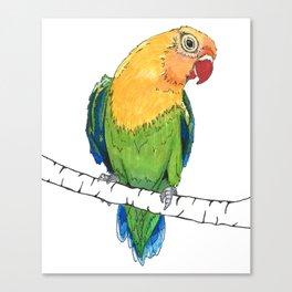Lovebird Listener Canvas Print