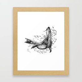 Seal and Fish Framed Art Print