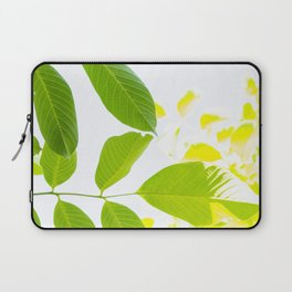 Delicate walnut tree leaves Laptop Sleeve