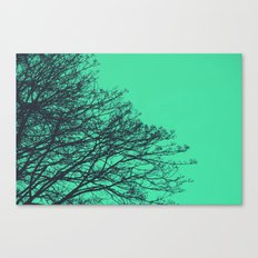 Explosions Canvas Print