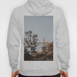san francisco, california Hoody