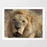 simba Art Prints featuring Simba by Fer Ruz