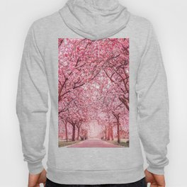 Cherry Blossom in Greenwich Park Hoody