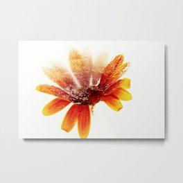 Frozen Flowers 4 Metal Print