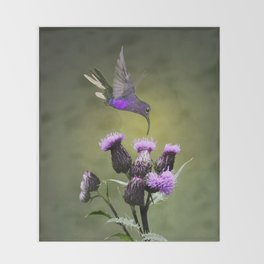 Violet Sabrewing Hummingbird and Thistle Throw Blanket