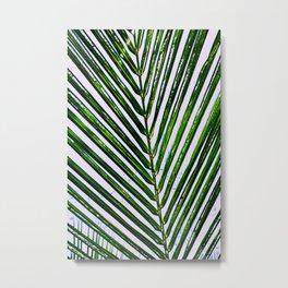 Palms on a Bahamas Afternoon Metal Print
