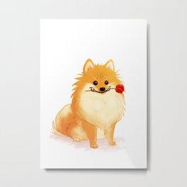 Charming Pomeranian Metal Print