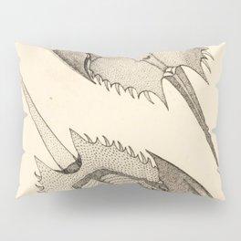 Horseshoe Crabs Pillow Sham