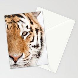 Tiger Portrait Stationery Cards
