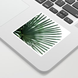 Palm Leaves 13 Sticker