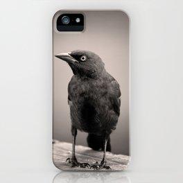 Goth Grackle iPhone Case