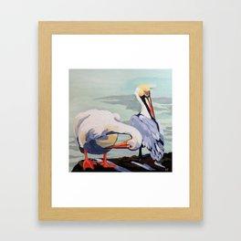 Preening Pelicans Framed Art Print