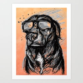 Only Cool Dogs Stare at the Sun Art Print