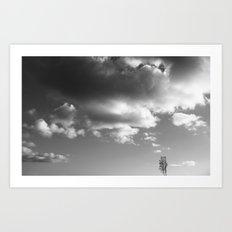 Soulmates ~ landscape Art Print