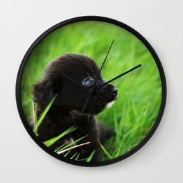 Shelter Puppy Wall Clock