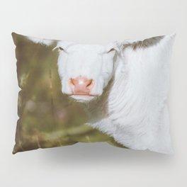 White Calf (Color) Pillow Sham