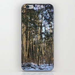 Winter at Home iPhone Skin