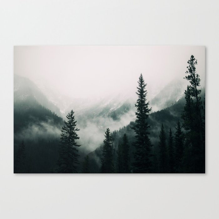 Over the Mountains and trough the Woods -  Forest Nature Photography Canvas Print