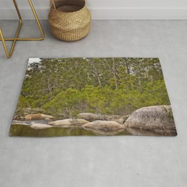 Peaceful river view with rocks Rug