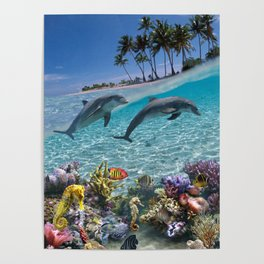 Coral Reef and Dolphins Poster