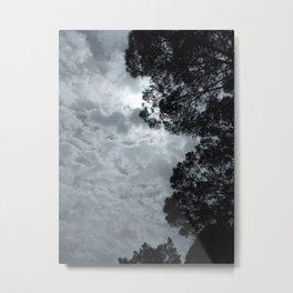 Quicksilver Metal Print
