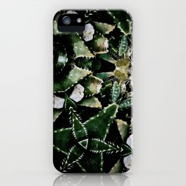 Succulents on Show No 1 iPhone Case