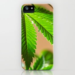 Cloned iPhone Case