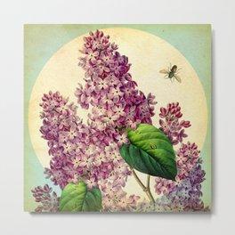 May Lilacs Metal Print