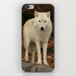 Spirit of the forest iPhone Skin