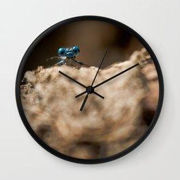 Libelula Azul, Blue Libelula Wall Clock
