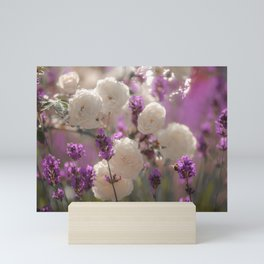 White roses and lavender scent Mini Art Print