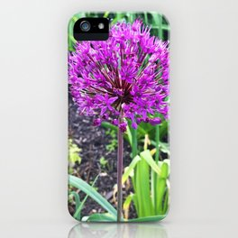 466 Allium FLower iPhone Case