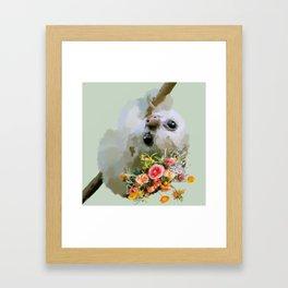 Floral Sloth (green) Framed Art Print