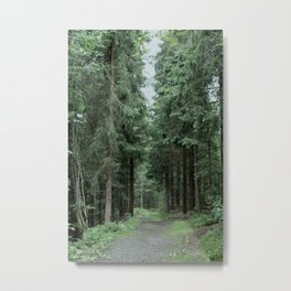 Running Path Metal Print