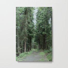 Running Path Metal Print