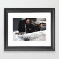 Zían Framed Art Print