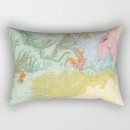 Southwest Map - Pastel Rectangular Pillow