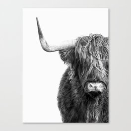 Highland Cow Portrait - Black and White Canvas Print