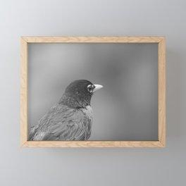 Black and White Bird Framed Mini Art Print