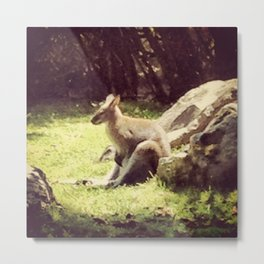 Kangaroo Farm Metal Print